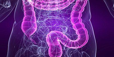 What are Probiotics and Why Sauerkraut?